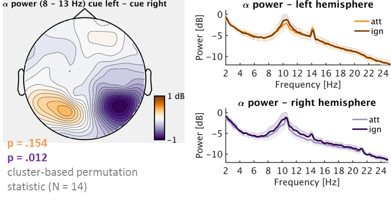 Flicker-driven brain waves and alpha rhythms –revisited